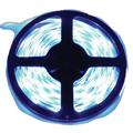 лента светодиодная Ecola 12V 4.8W/m 60Led/m IP20 холодный 6000К(интер) STD SMD3528 S2LD05ESB 463072 в интернет магазине Импульс, фото