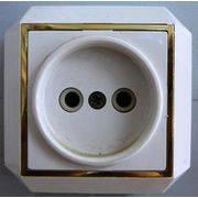 Розетка сетевая  откр пр позол (157) в интернет магазине Импульс, фото
