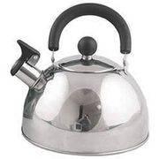 Чайник Катунь КТ-104 (3,2л) матовая полировка