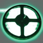 лента светодиодная Ecola 220V 14х7 14.4W/m 60Led/m IP68 зеленый S10G14ESB 617983 в интернет магазине Импульс, фото
