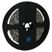 лента светодиодная Ecola 220V 14х7 14.4W/m 60Led/m IP68 синий S10B14ESB 617981 в интернет магазине Импульс, фото