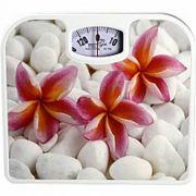 весы напольные MAXTRONIC MAX-1640 механические в интернет магазине Импульс, фото