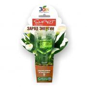Удобрение Кирово-Чепецк Стимулятор для комн.растений Заряд энергии JOY 30мл в интернет магазине Импульс, фото